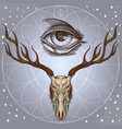 sketch of deer skull and all seeing eye on gray vector image vector image