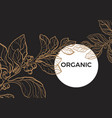 template organic black vector image vector image