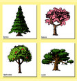 tree sketch hand drawn style types green vector image vector image