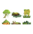 tropical jungle landscape elements set user vector image vector image