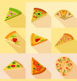 various pizza icons set flat style vector image