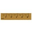 wooden inch ruler vector image vector image
