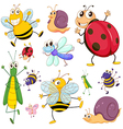 a group insects vector image