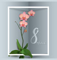 beautiful on a theme 8 march vector image vector image