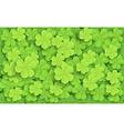 Cartoon of Green fresh clovers vector image vector image