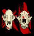 grange coyote skull vector image vector image