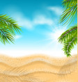 tropical beach with sand sea palm leaves sun vector image vector image