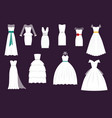 wedding white bride dress elegance fashion vector image vector image