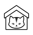 cat animal domestic house pet outline vector image