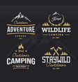 outdoor retro emblems vector image vector image