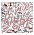 Resell Rights Master Rights Private Label Rights vector image vector image