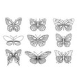 set of butterflies for design element and adult vector image