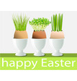 eggs with fresh herbs vector image vector image