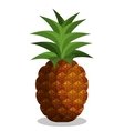 icon pineapple fruit design vector image