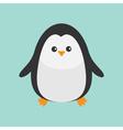 Penguin Cute cartoon character Baby bird Arctic vector image