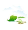 Tree leaf floating on the river vector image vector image