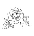 Rose sketch vector image vector image