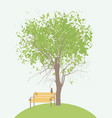 spring banner with green tree bench and cat vector image vector image
