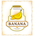 Three ripe bananas on a product label vector image