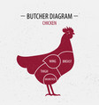 cut of chicken poster butcher diagram vector image vector image