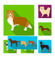 design of cute and logo collection of vector image