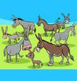 funny donkeys cartoon farm animals group vector image vector image