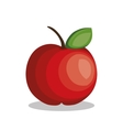 icon apple fruit design vector image