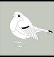 robin bird lining vector image vector image
