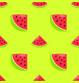 seamless pattern with hand drawn watermelon vector image vector image