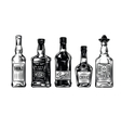 bottles alcohol icon vector image