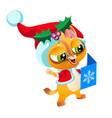 cartoon cat in cute hat reading greeting postcard vector image vector image