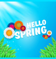 hello spring banner with green grass sky vector image