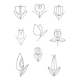 line flower decor set vector image vector image