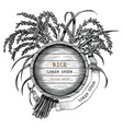 rice concept logo hand draw vintage engraving vector image vector image