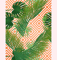 summer tropical palm leaves pattern on copper vector image