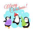 christmas winter holidays greeting card vector image vector image