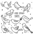 collection cute hand drawn birds vector image vector image