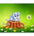 Cute little bunny on tree stump in summer season vector image vector image