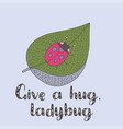 cute summer hand drawn card with a ladybug vector image