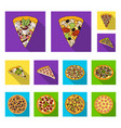 different pizza flat icons in set collection for vector image