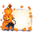 halloween background with parchment pumpkin cat vector image vector image