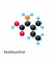 molecular omposition and structure of isoleucine vector image vector image