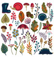 collection of autumn nature elements vector image