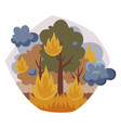 burning forest tree in fire flame nature vector image