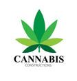 cannabis leaf green health logo designs vector image