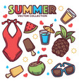 collection summer tropical objects vector image vector image