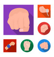 fist and punch sign set of vector image