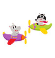 funny animal pilot characters flying on airplane - vector image vector image