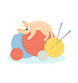 funny cartoon cat lies with pleasure on the balls vector image