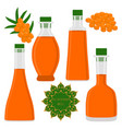 the theme bottles oil vector image vector image